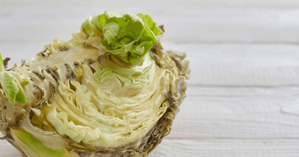 Sayuran Yang Dah Bertukar Warna Masih Boleh Di Makan, Tapi…
