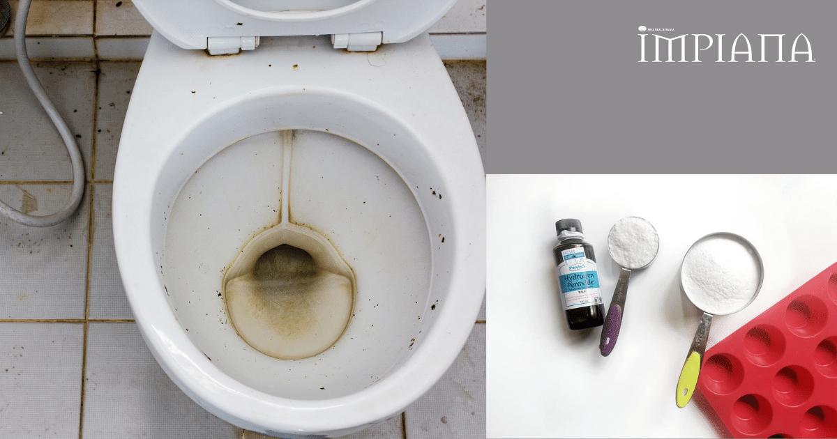 "Jom DIY "" Toilet BOMB"" Semudah 1,2 & 3"