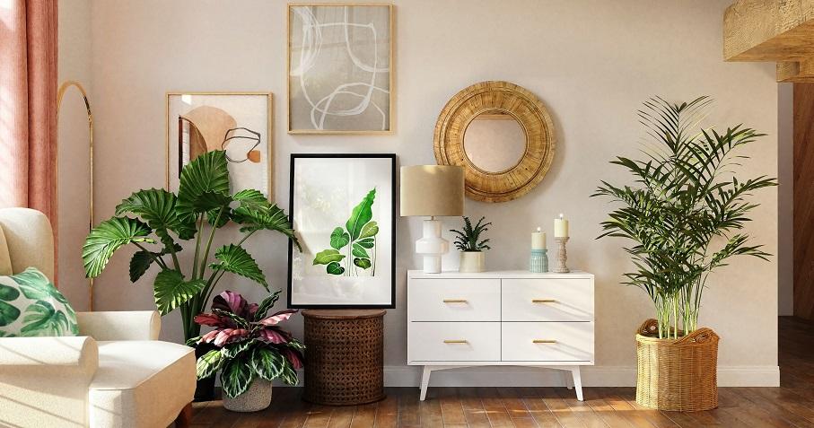 Cara Betul Baja Indoor Plant Kalau Nak Pokok Sentiasa Sihat Dan Cantik
