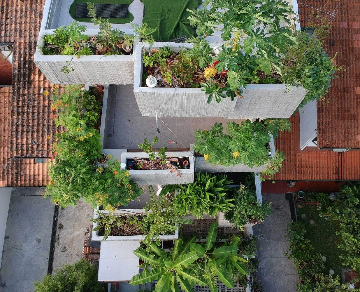 Rumah 'Planter Box' Di Reka Penuh Gaya Hidup Pemilik 2