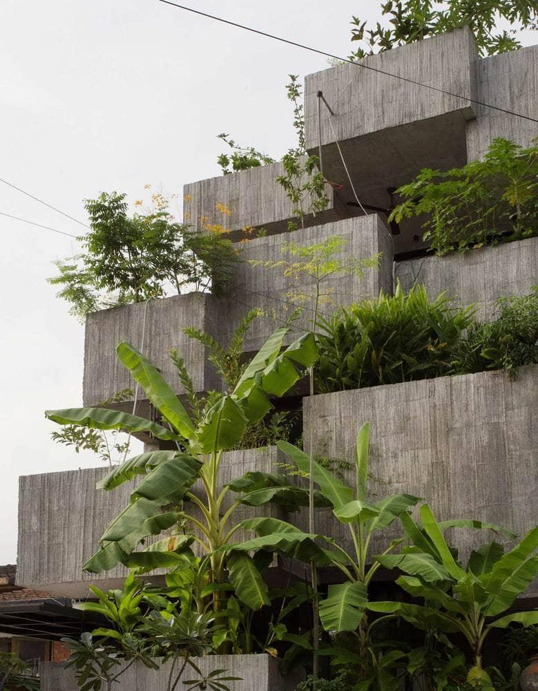 Rumah 'Planter Box' Di Reka Penuh Gaya Hidup Pemilik 4