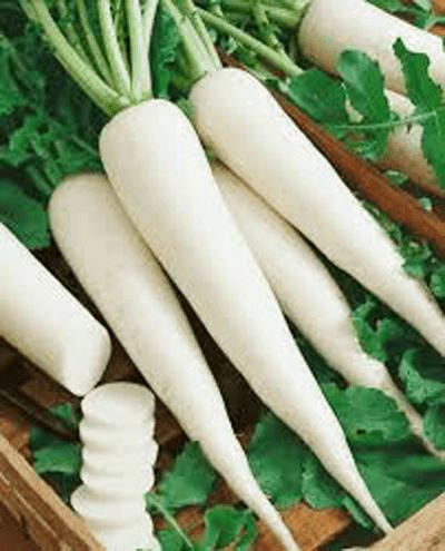 Ini 6 Jenis Sayur Umbisi Yang Mudah Di Tanam Dalam Pasu 10