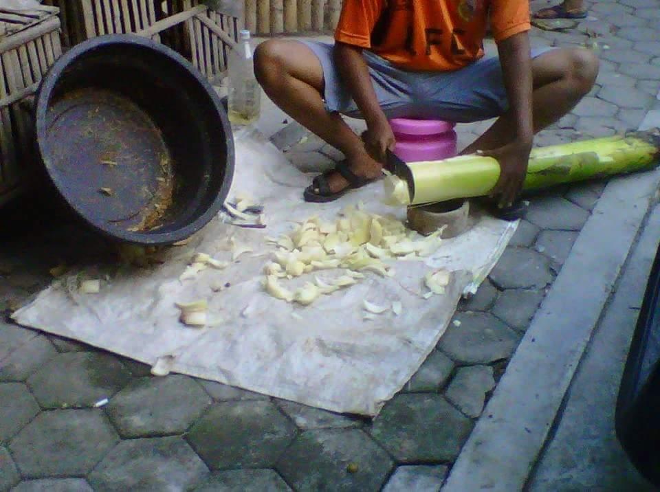 Ini Sebab Orang Thailand Dan Indonesia Bagi Kambing dan Ayam Makan Batang Pisang 2