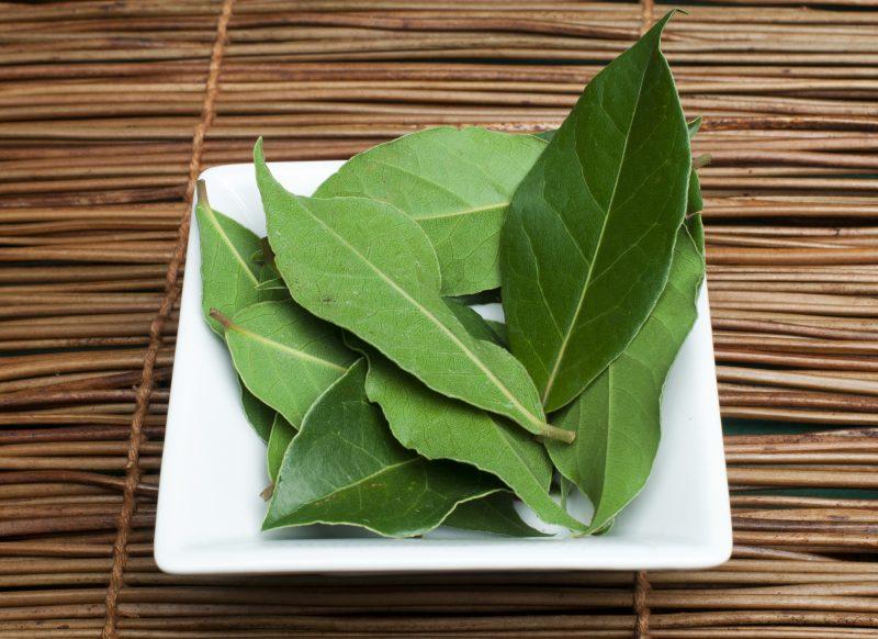 Kenali English Herbs Daun Bay Perbaiki Aroma Rasa Makanan Impiana