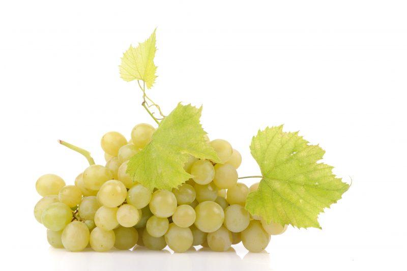 Ini 10 Jenis Anggur Yang Sesuai Untuk Ditanam Di Bumi Malaysia 4