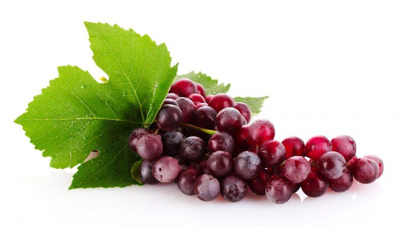 Ini 10 Jenis Anggur Yang Sesuai Untuk Ditanam Di Bumi Malaysia 10