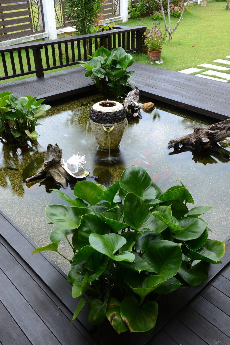 (GAMBAR) Bina Kolam Dengan Kedalaman 2 Kaki Menggunakan Pond Liner Hasilnya Lebih Menarik 6