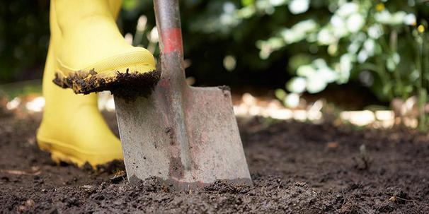 8 Perkara Yang Wajib Anda Lakukan Untuk Jaga Pokok Ketika Musim Hujan 3
