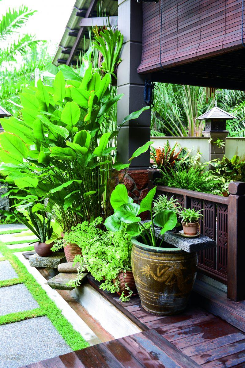 Deco Laman Tepi Rumah / 50 Desain Kolam Renang Minimalis ...