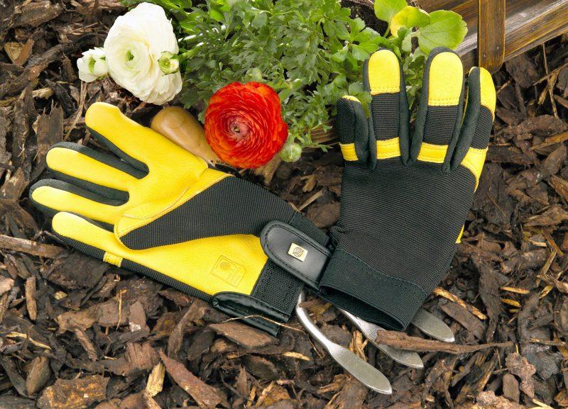 9 Kegunaan Bedak Di Kebun, Yang Paling Best Ia Mampu Melindungi AKAR 3