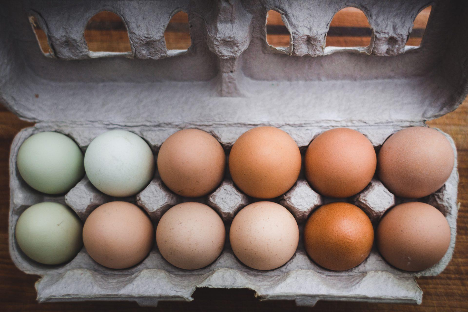 Basuh Dahulu Telur Sebelum Disimpan, Perlu Ke? 3