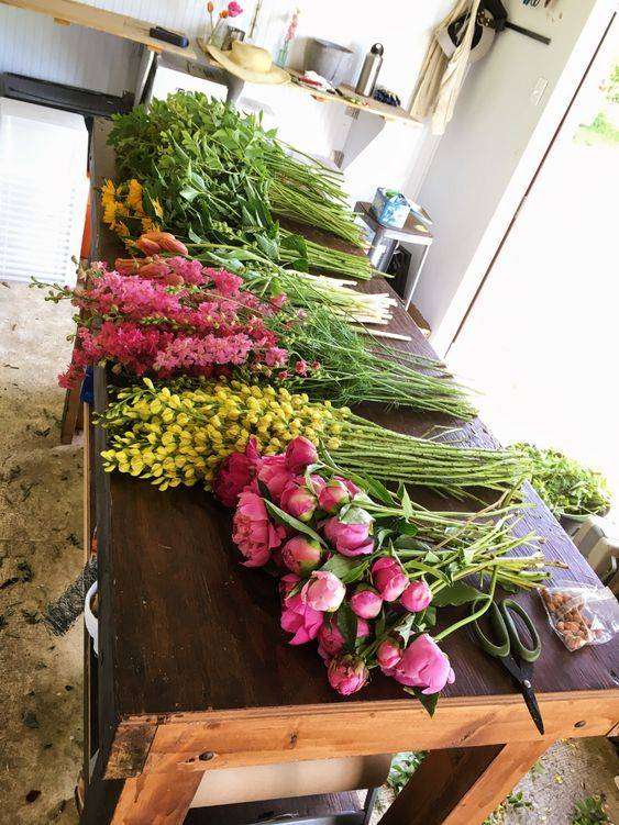10 Cara Ini Mampu Panjangkan Hayat Flower Cut Anda 3